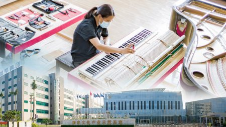 Pearl River Piano Factory Expertise